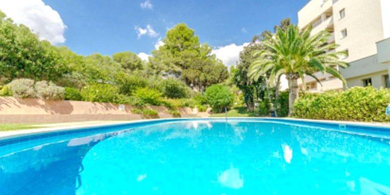 wohnung-cala-vinyas-pool